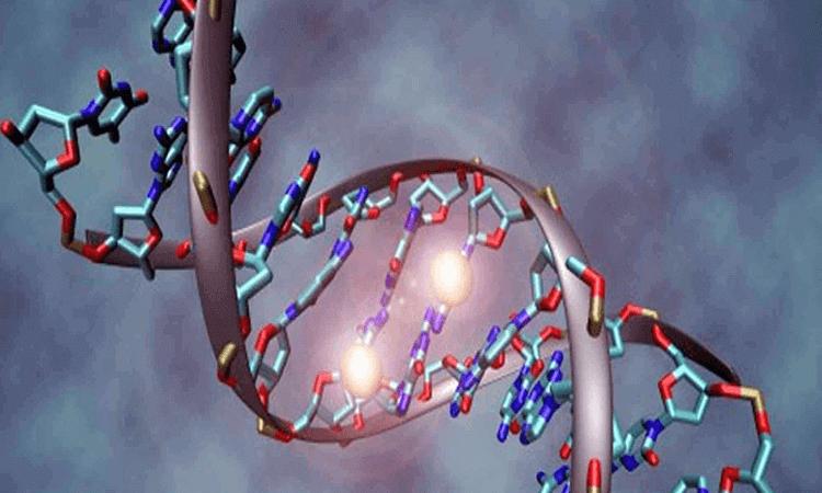 consulta genetica y apoyo diagnostico